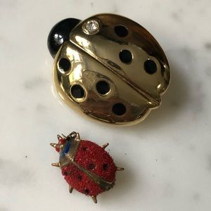 🔥 Set of 2 Lady Bug Brooches